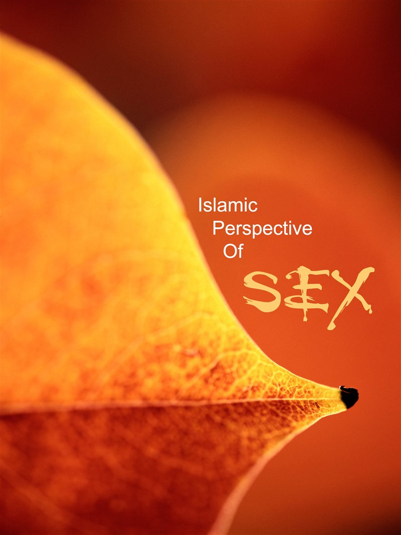 Sex education an islamic perspective